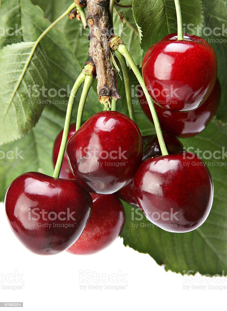Cherry with leaf royalty-free stock photo