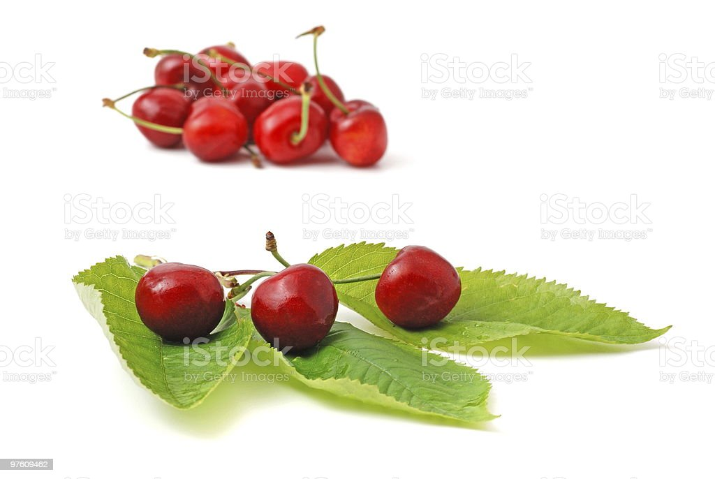 Cherry with Leafs royalty-free stock photo