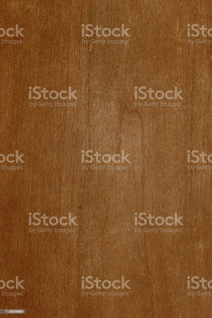 cherry wood, Prunus serotina royalty-free stock photo