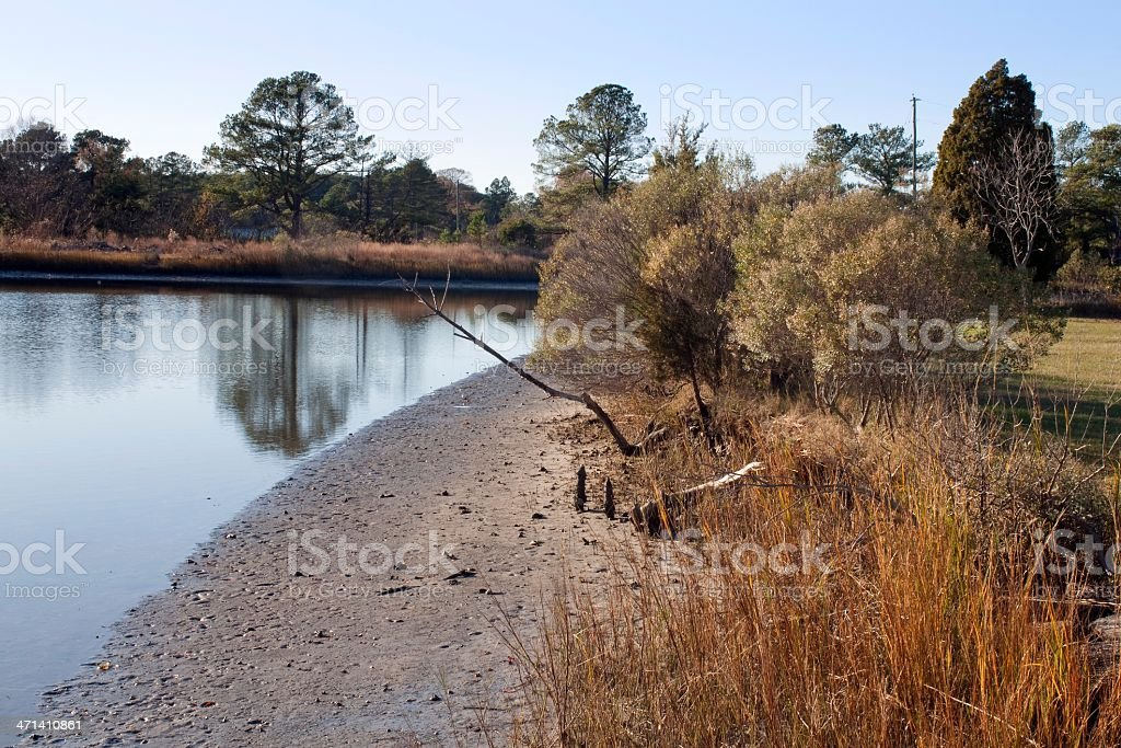 Chesapeake Bay Estuary at Low Tide stock photo