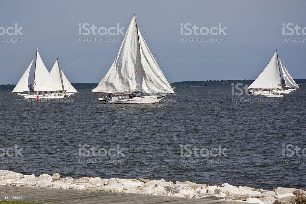 Chesapeake Bay Skipjack Race stock photo