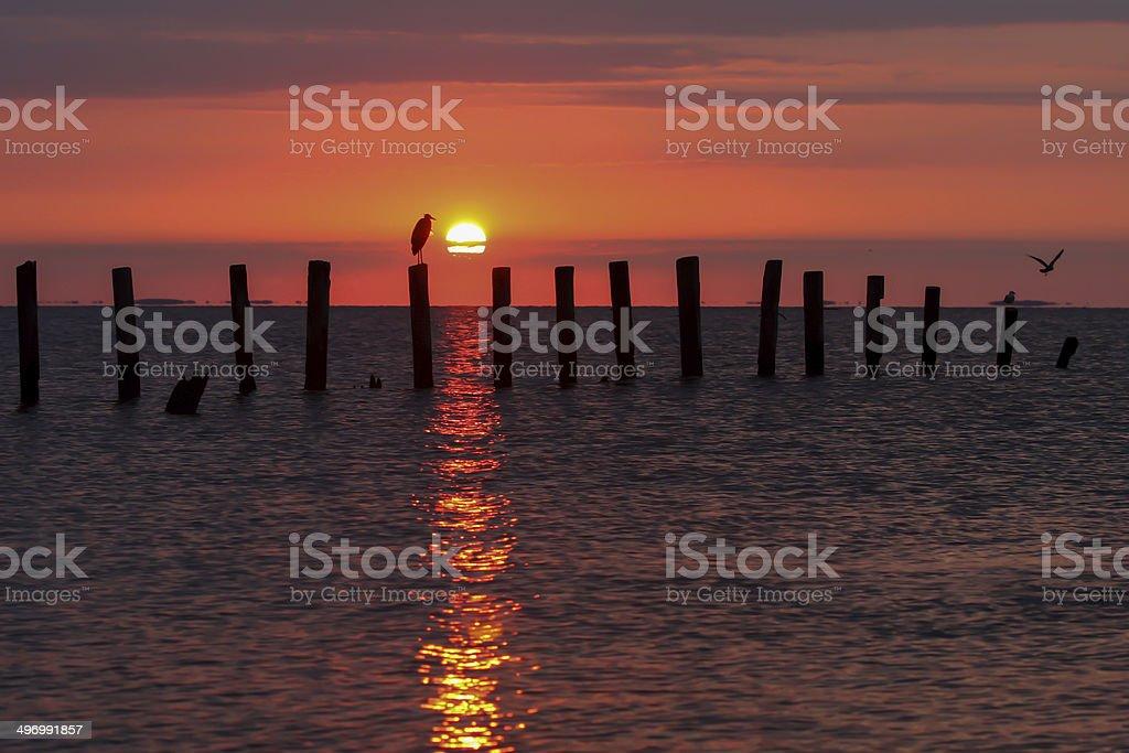 Chesapeake Bay Sunrise stock photo