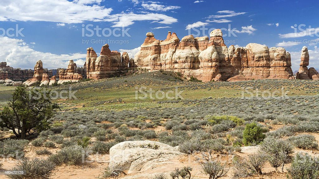 Chesler Park Needles and Meadow stock photo