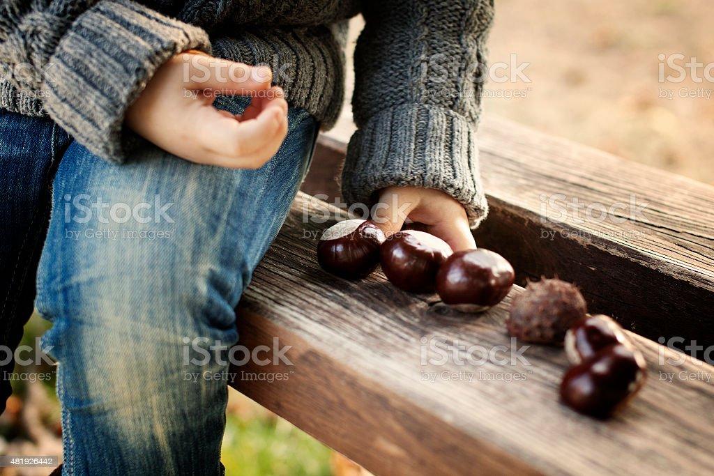 Chesnuts fun stock photo