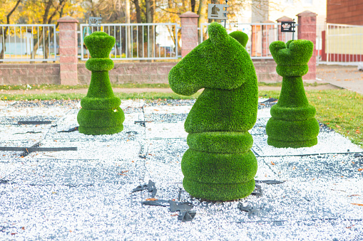chess figures covered with grass