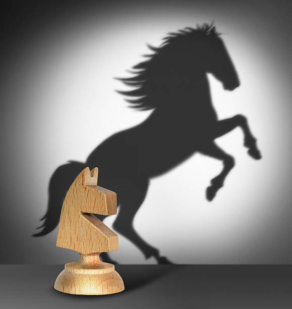 chess horse with  shadow - knight on horse stock photos and pictures