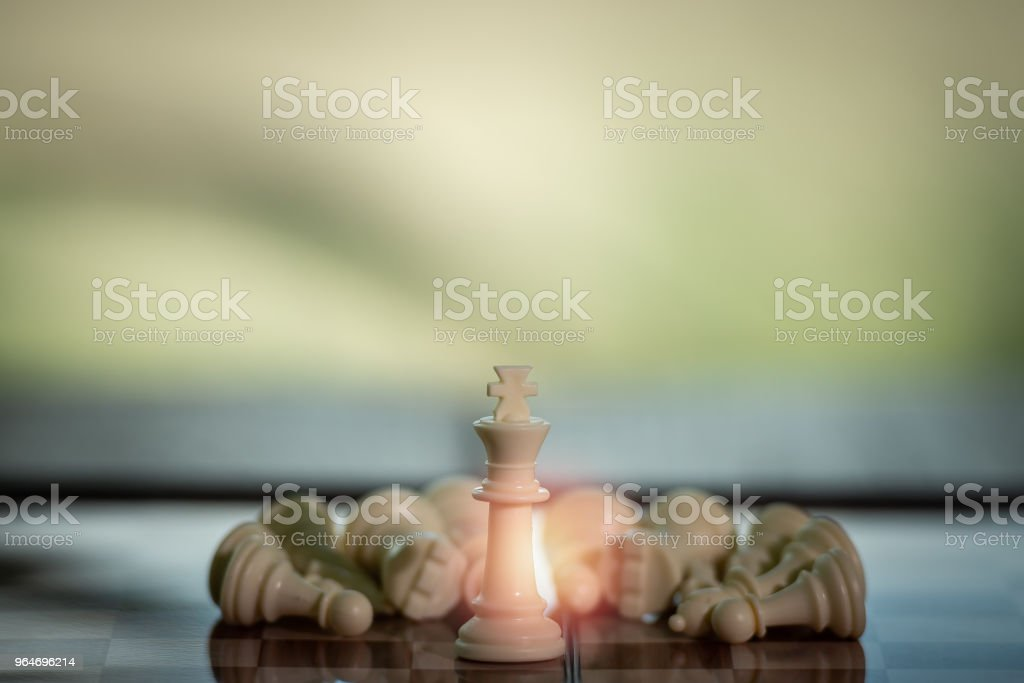 Chess on a Board of wood.  nature background.  game, strategy, management or leadership, business success concept royalty-free stock photo