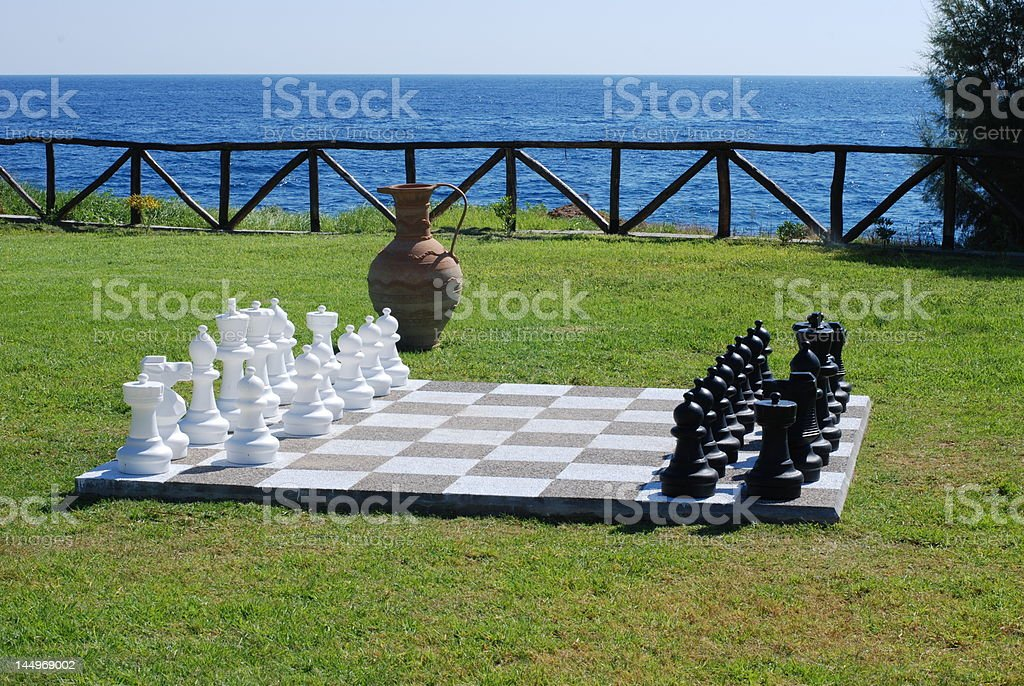 Chess on a grass royalty-free stock photo