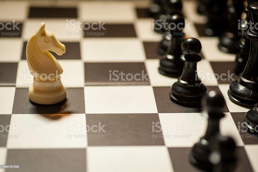 Chess white horse moving stock photo