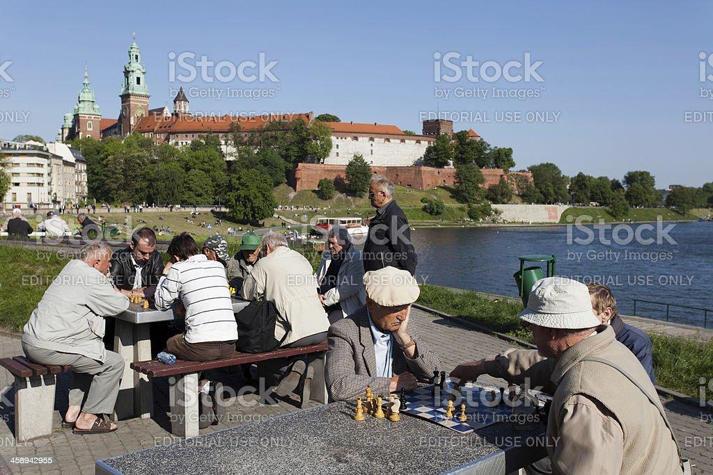 Chess-players stock photo
