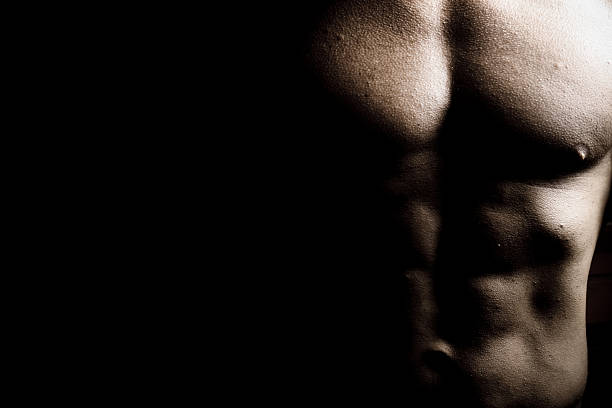 Chest of Male Body Builder stock photo