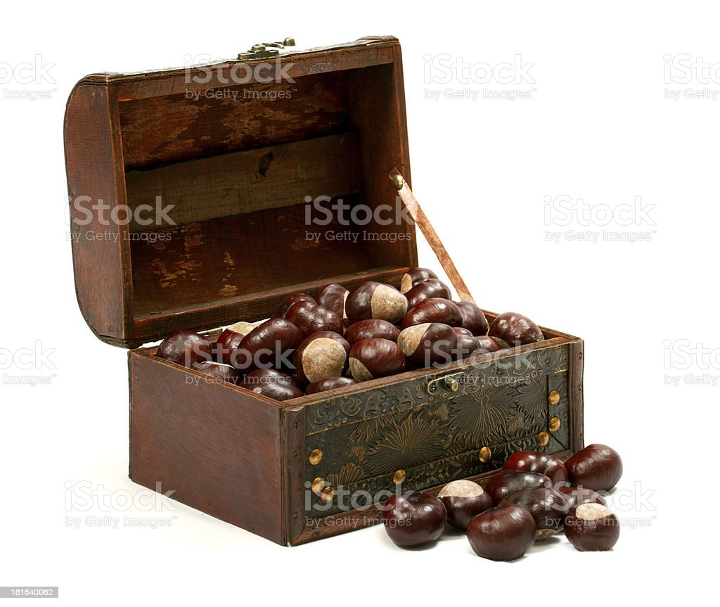 Chest With Chestnut royalty-free stock photo