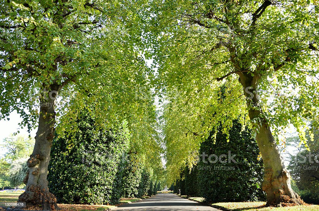 Chester Park in England royalty-free stock photo