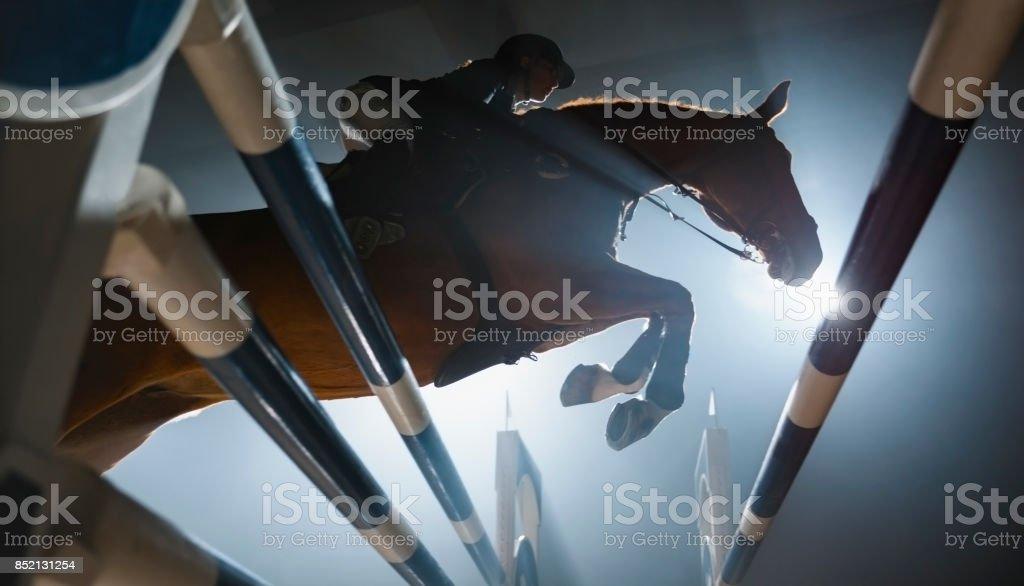 Castaño jinete caballo y es saltando sobre carril - foto de stock