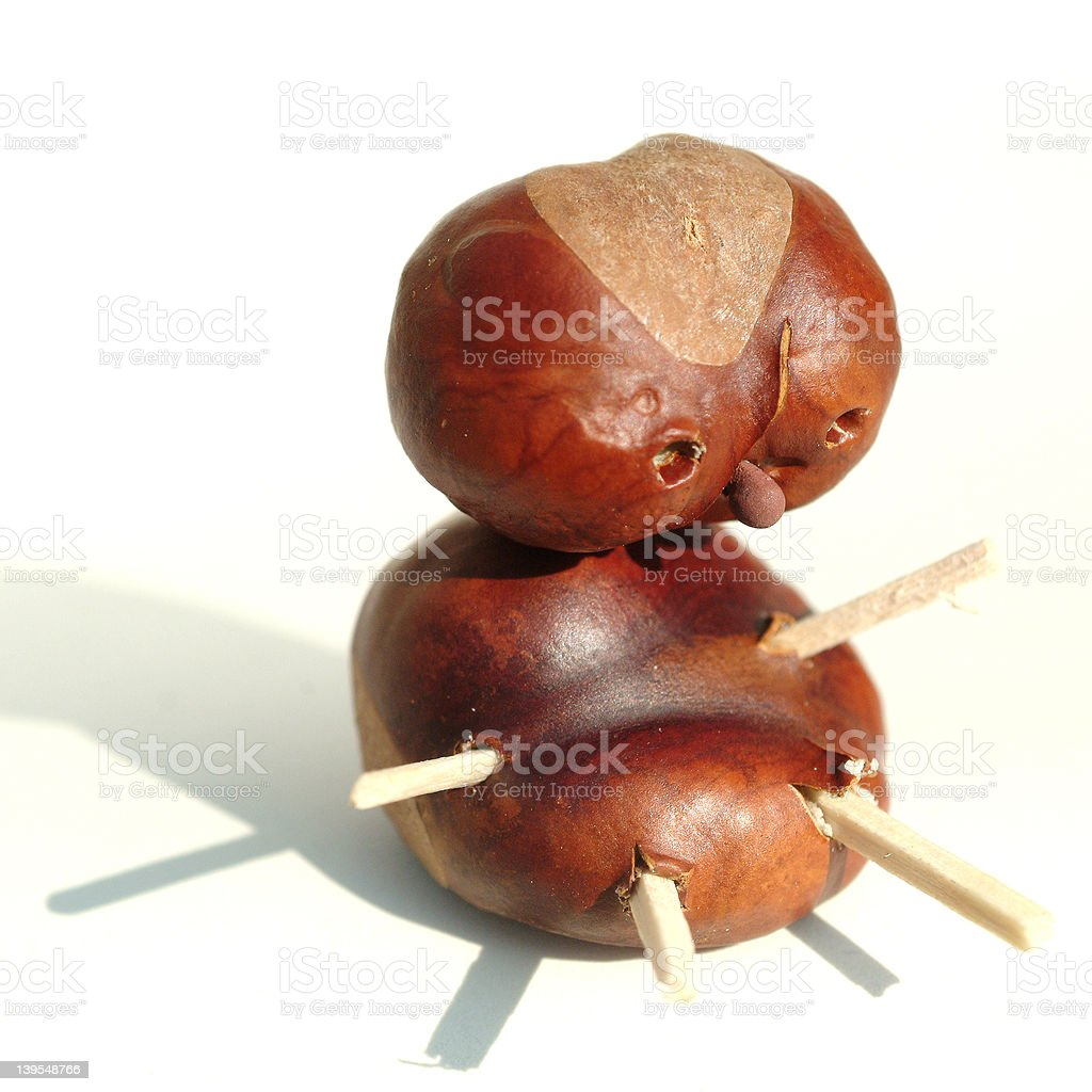 chestnut man one stock photo