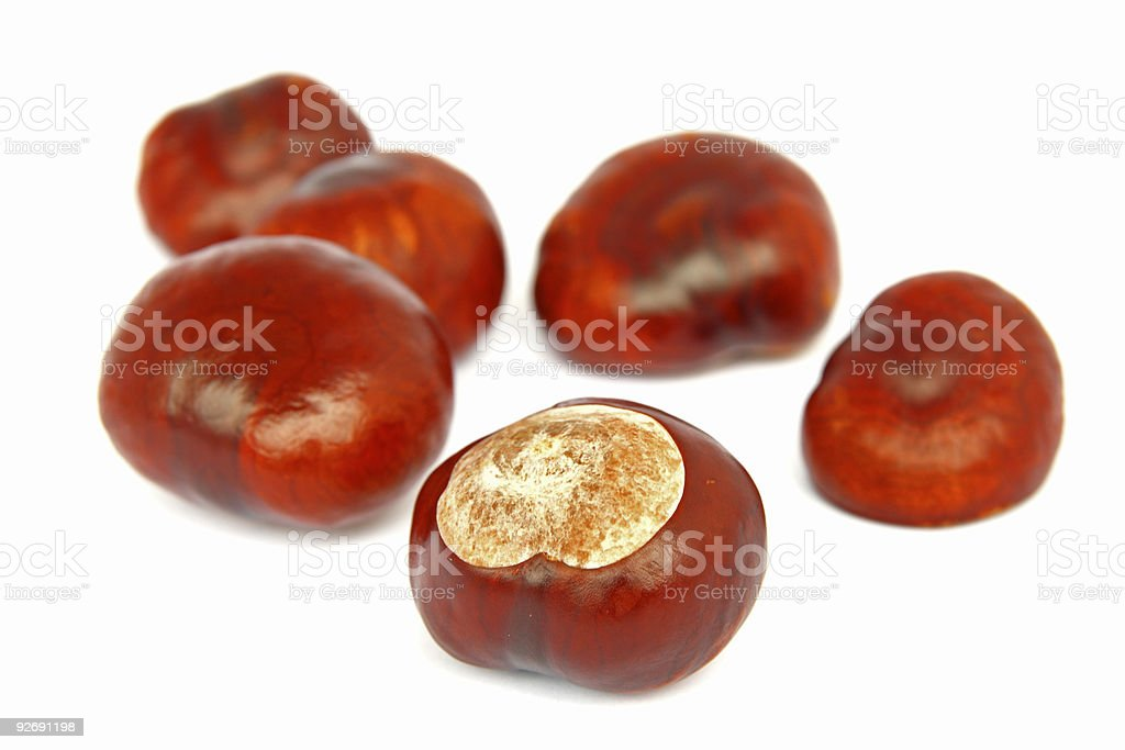 chestnuts isolated royalty-free stock photo