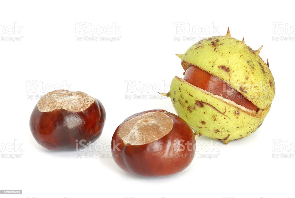 Chestnuts - Royalty-free Autumn Stock Photo
