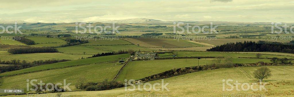 Cheviot Panorama stock photo