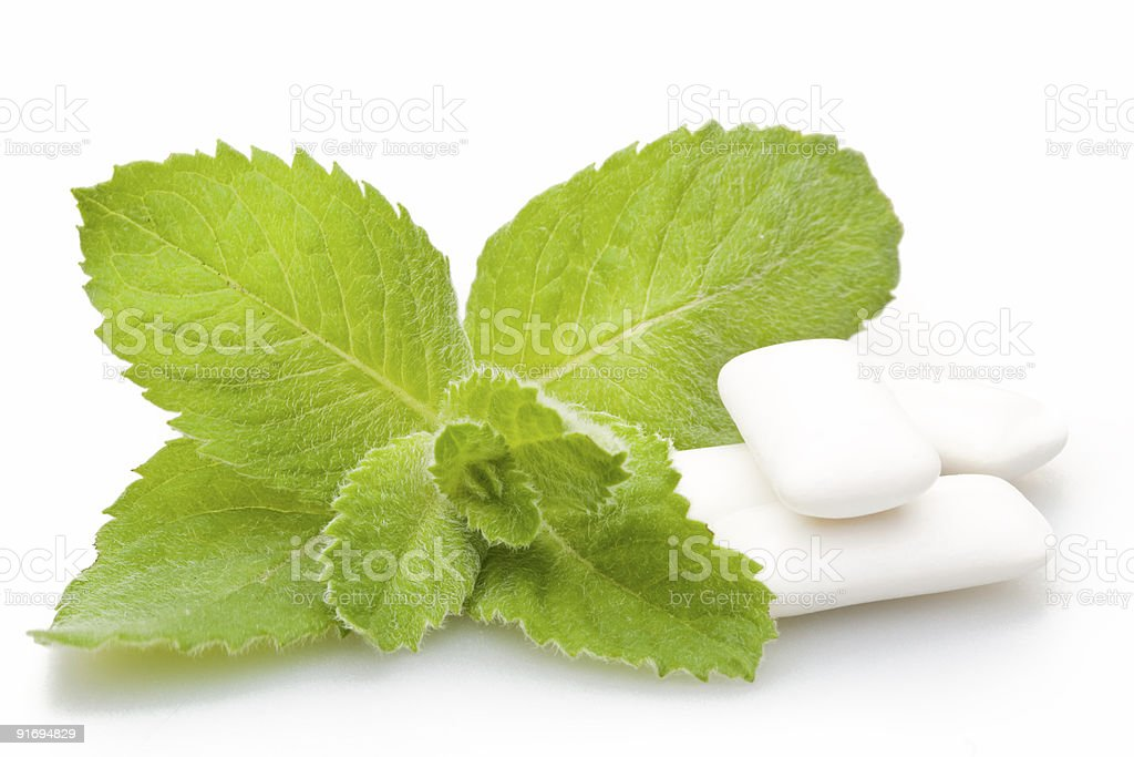 Chewing gum pictured with mint stock photo