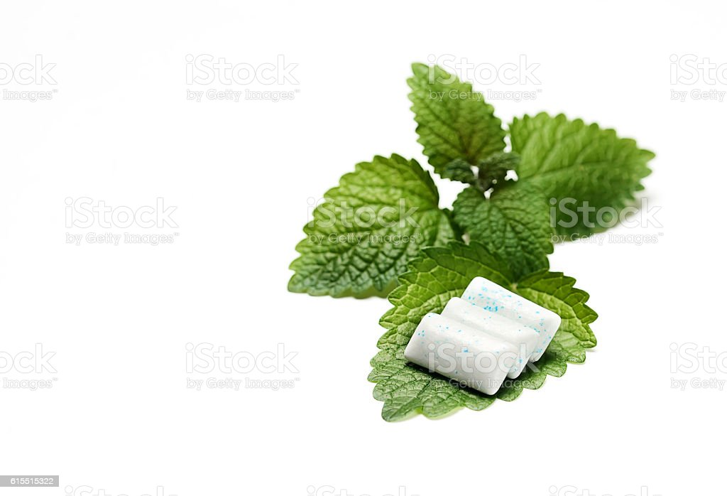 Chewing Gum with Fresh Mint Leaves Isolated on White Background stock photo