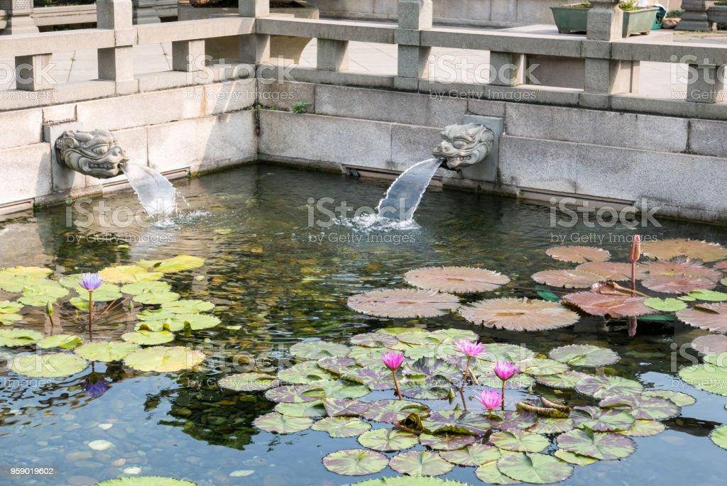 Chi Lin Nunnery Lotus Pond, Kowloon, Hong Kong stock photo