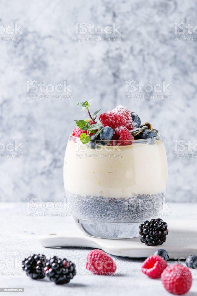 Chia pudding with rice porridge royalty-free 스톡 사진