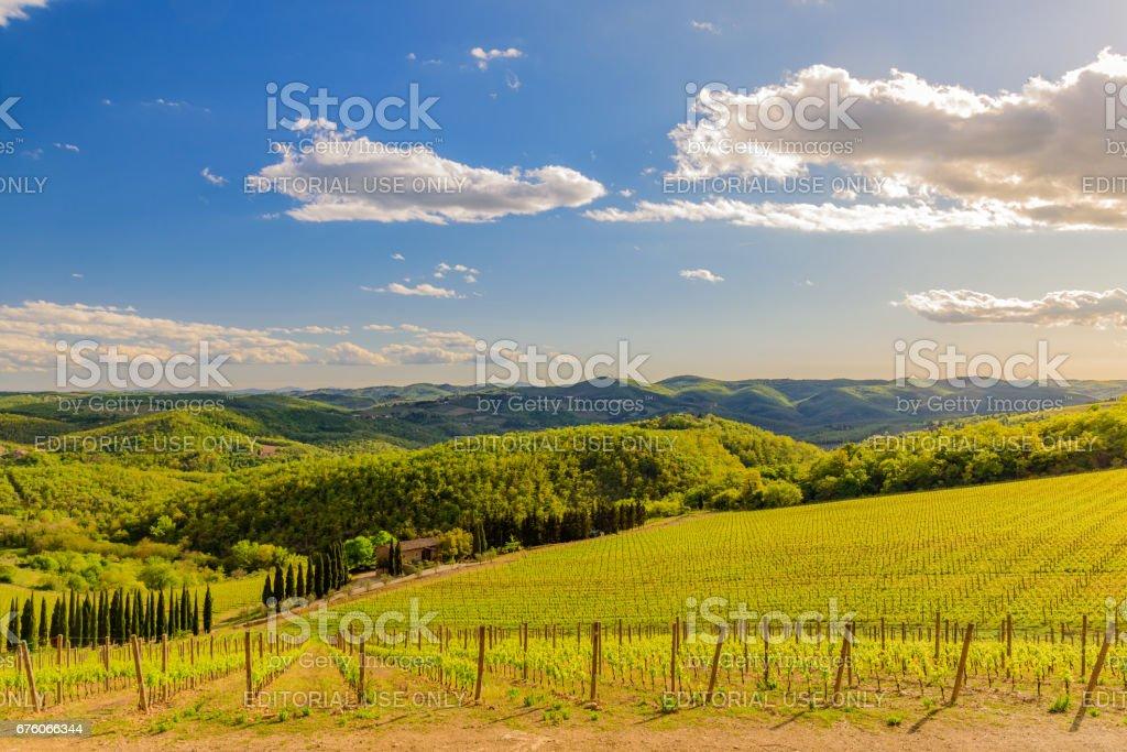 Chianti countryside near the town of Radda stock photo