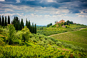 istock Chianti hills with vineyards and cypress. Tuscan Landscape between Siena and Florence. Italy 1244584599