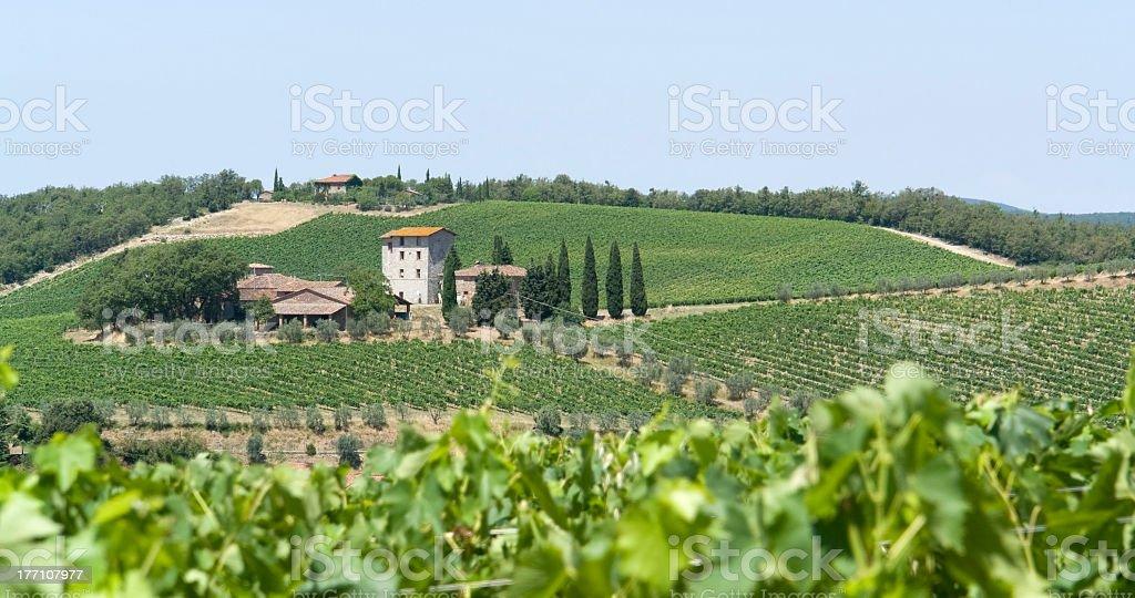 Chianti in Tuscany stock photo