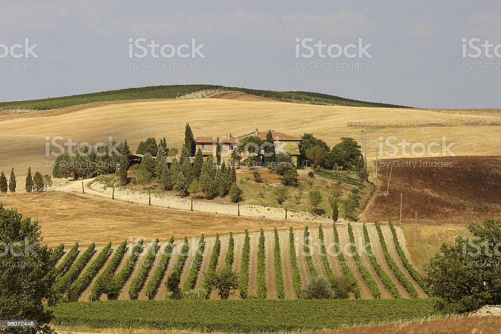 Valle del Chianti foto stock royalty-free