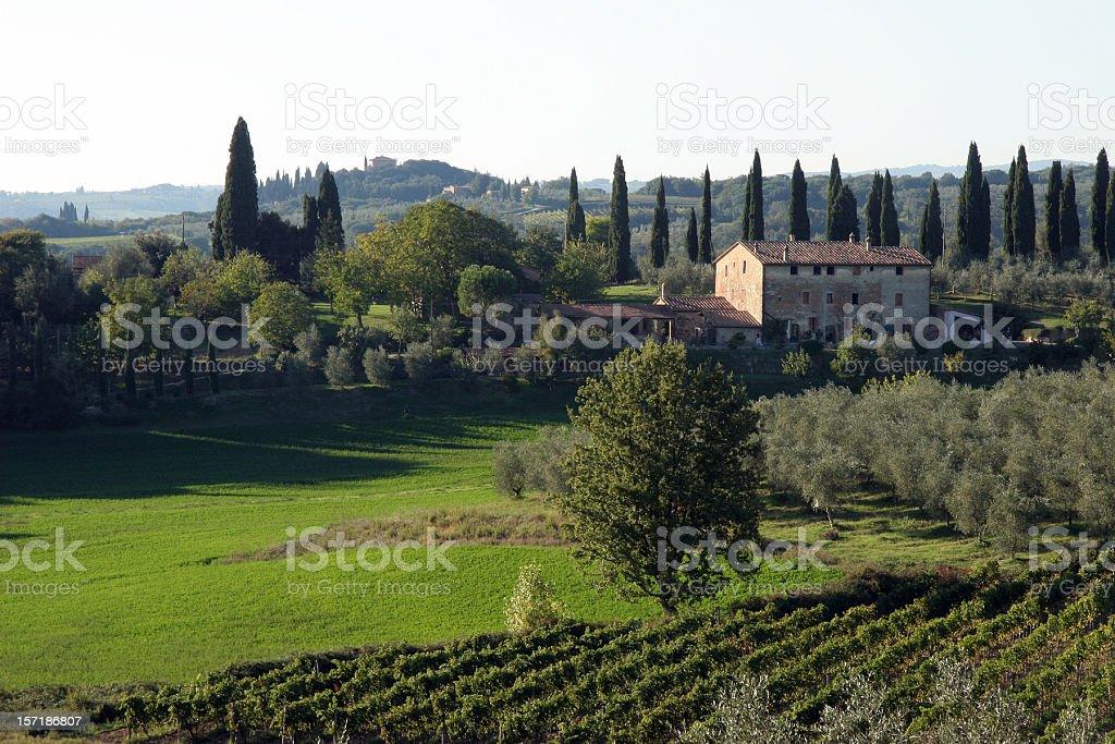 Chianti, Tuscany Italy North East of Siena royalty-free stock photo