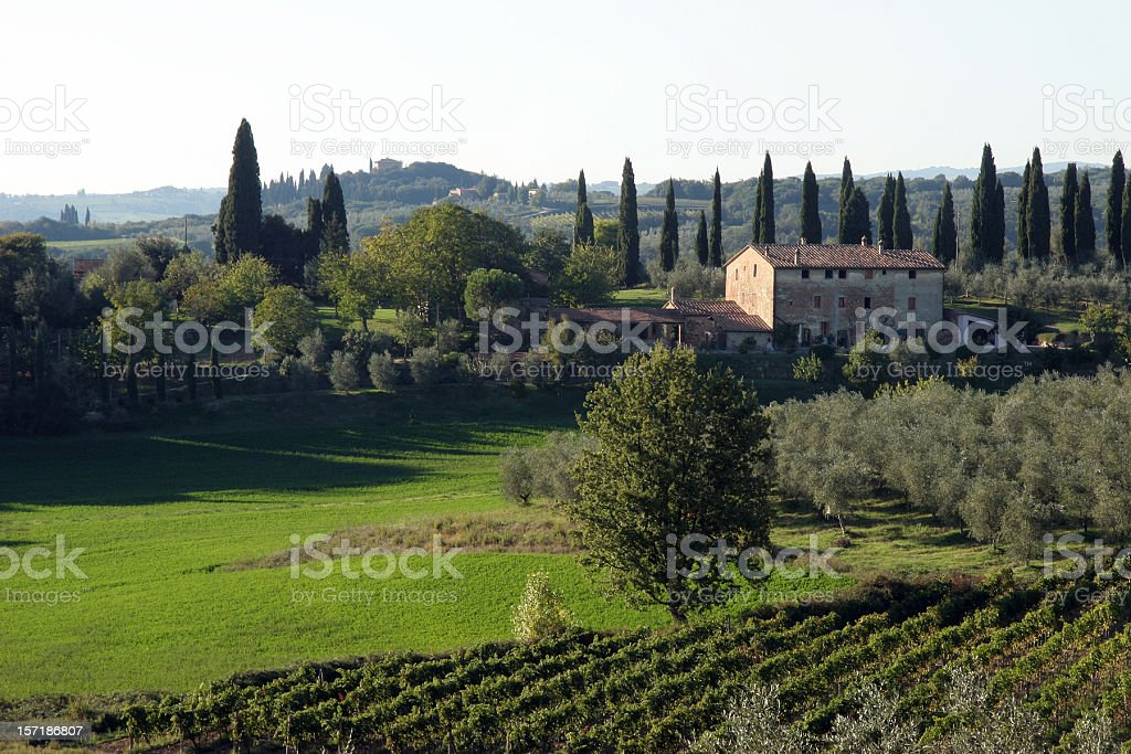 Chianti, Tuscany Italy North East of Siena stock photo