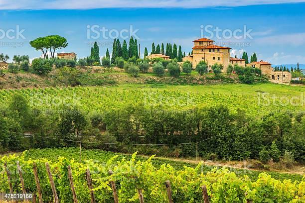Chianti vineyard landscape with stone housetuscanyitalyeurope picture id475219166?b=1&k=6&m=475219166&s=612x612&h= ldgs 3hdgtjwh xka5fylzkxhmwzy5zeqvxnhxae a=