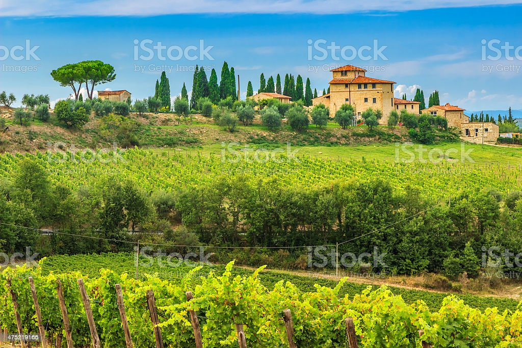 Chianti vineyard landscape with stone house,Tuscany,Italy,Europe stock photo