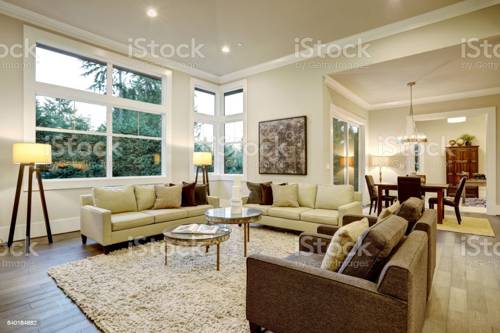 Chic Light Living Room Design With Dark Floors Stockfoto Und