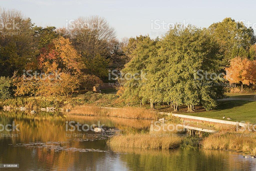 Chicago Botanic Gardens Autumn stock photo