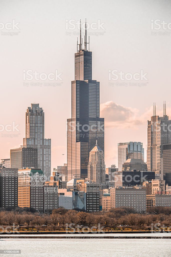 Chicago Cityscape Vertical stock photo