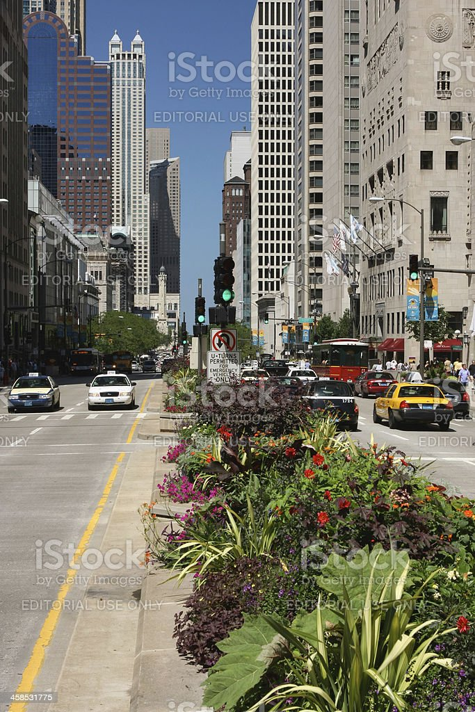 Chicago North Michigan Avenue and Water Tower stock photo