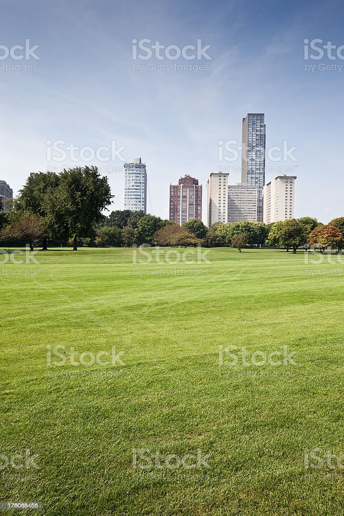 Chicago Park and Apartment Skyscrapers royalty-free stock photo