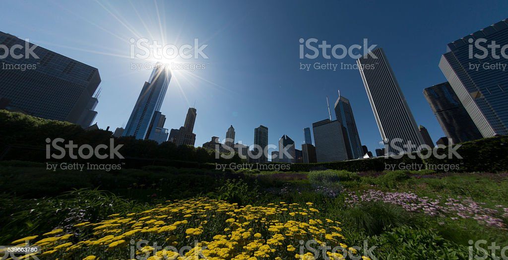 Chicago Park Skyline stock photo