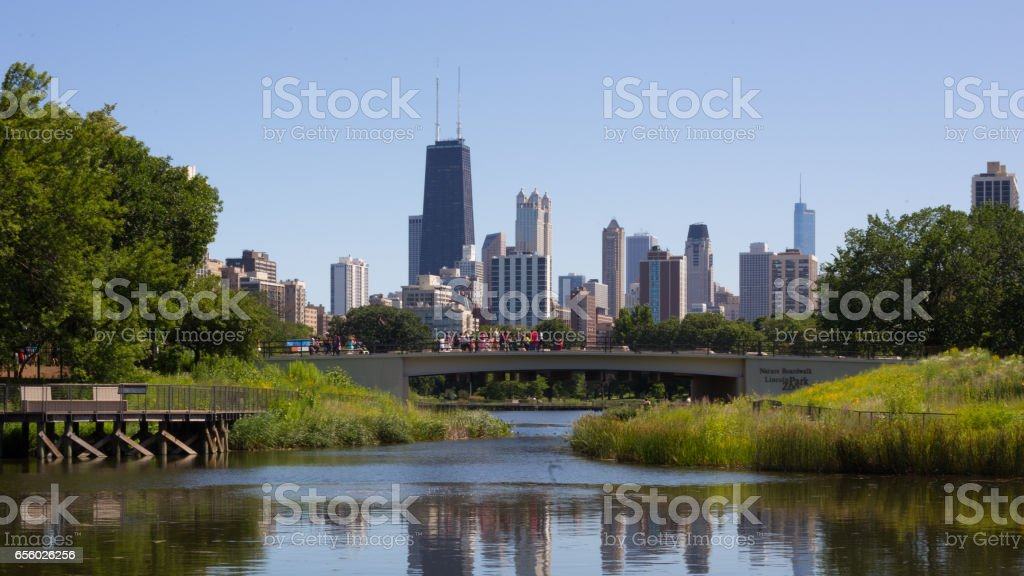 Chicago Skyline from Lincoln Park Zoo stock photo