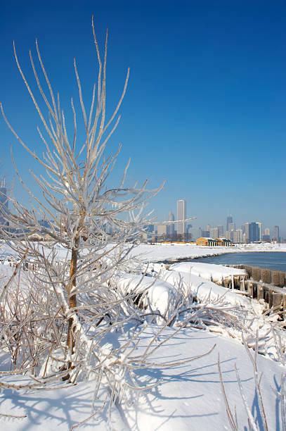 skyline von chicago vom nördlich island - die toteninsel stock-fotos und bilder