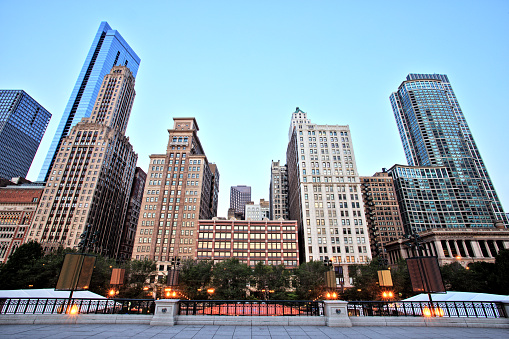 Chicago Skyline View from the Millennium Park