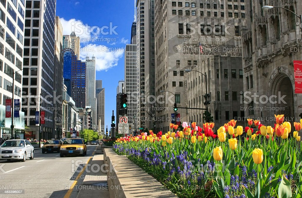 Chicago's Magnifcent Mile in Bloom stock photo