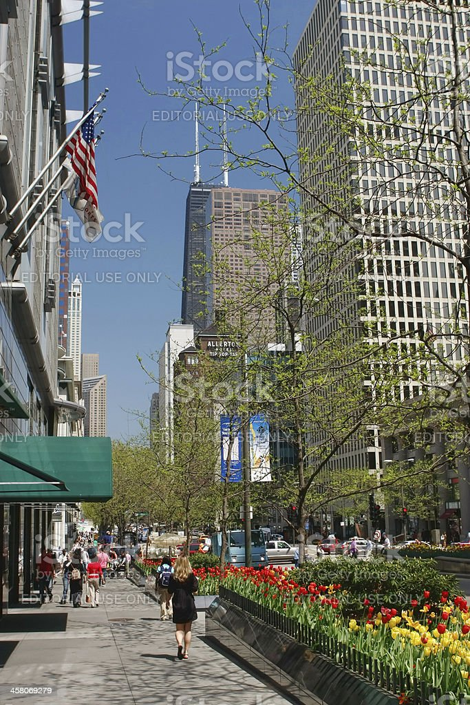 Chicago's Magnificent Mile Shopping royalty-free stock photo