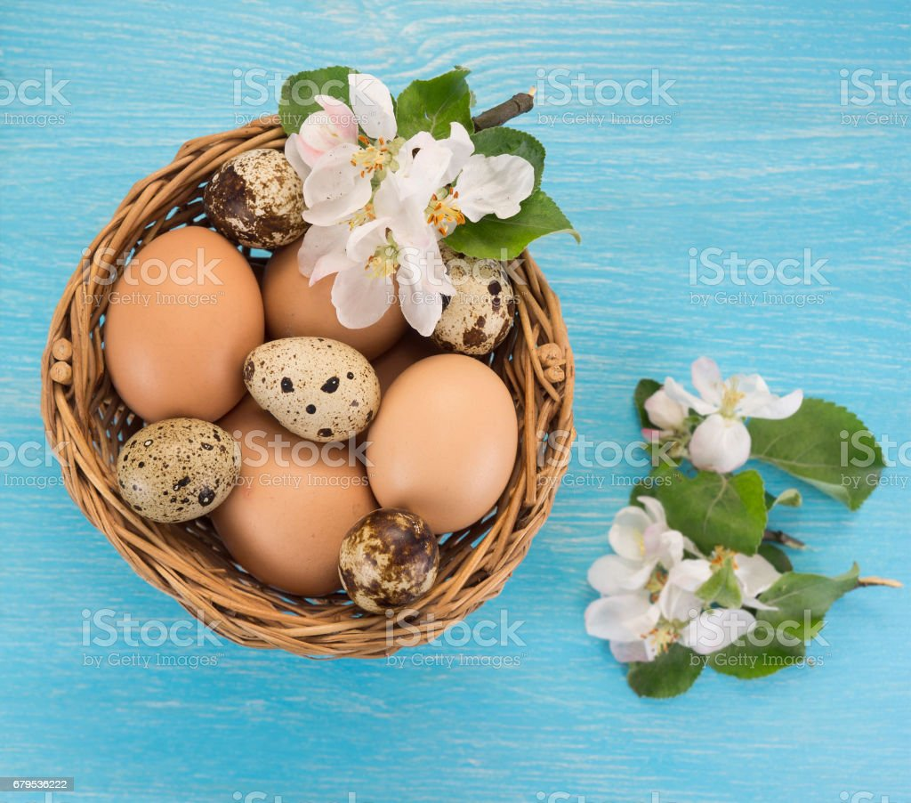 Chicken and quail eggs in the basket and spring flowers royalty-free stock photo