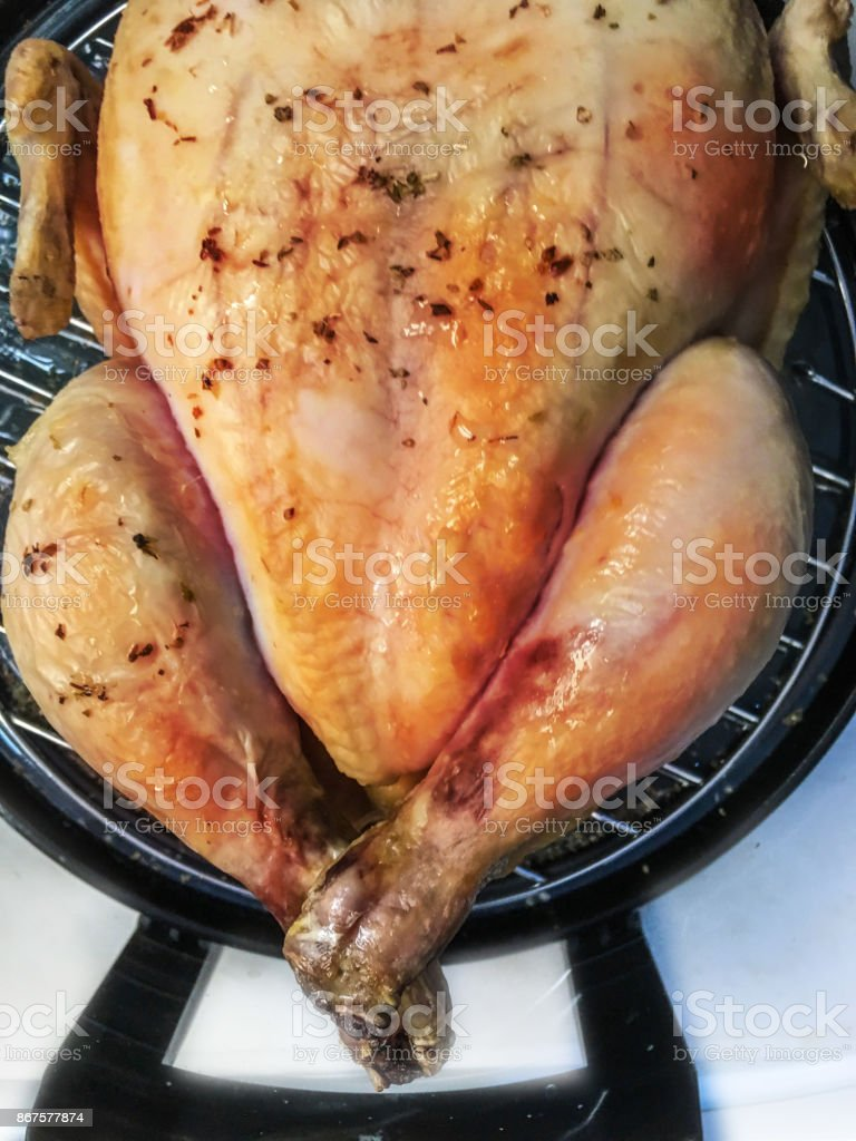 chicken background isolate stock photo