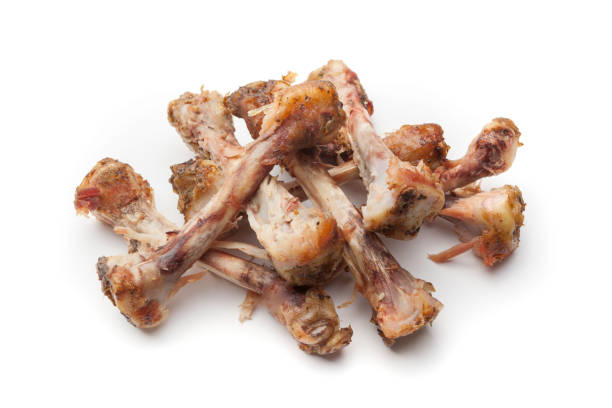 Chicken bones stock photo