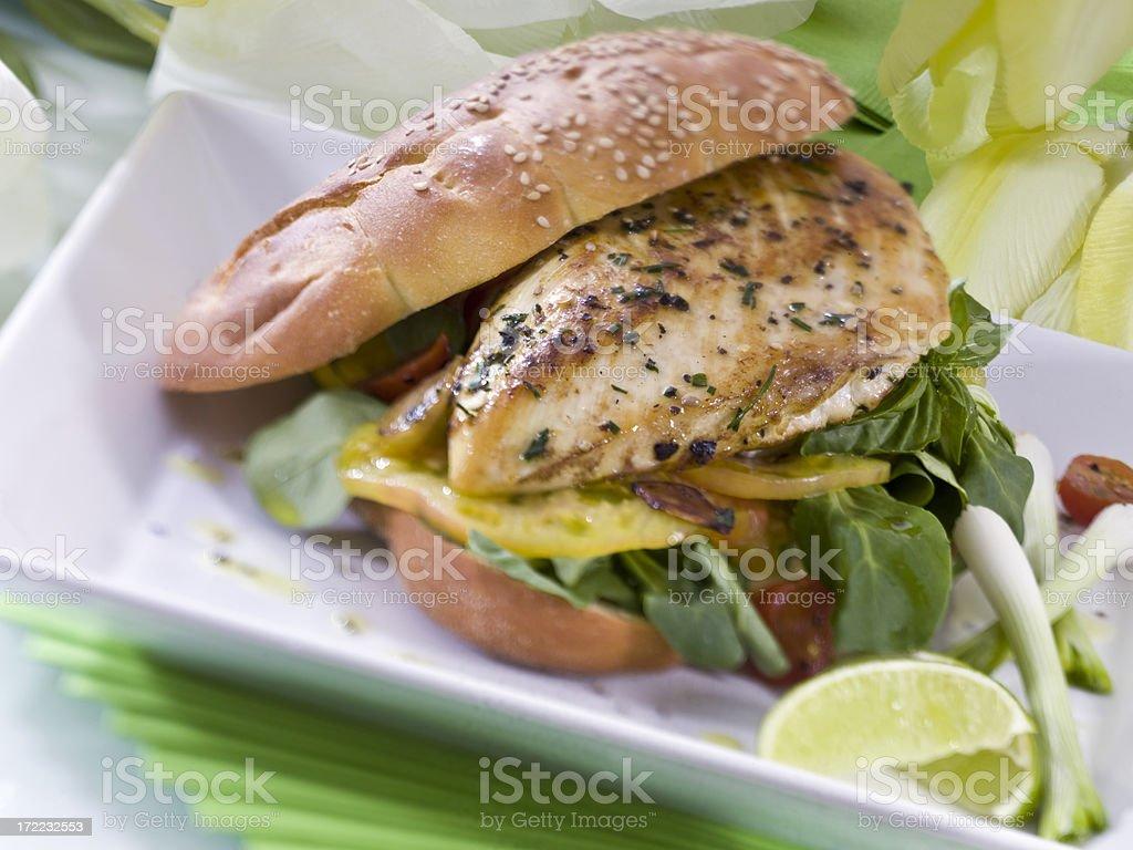 chicken breast sandwich stock photo