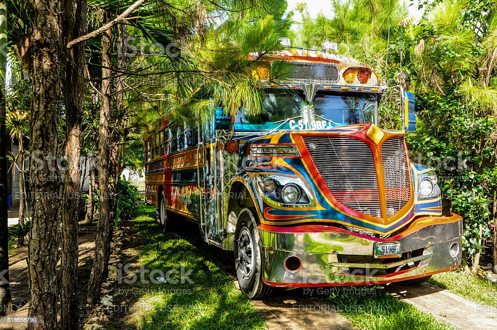 Chicken Bus at the jungle stock photo